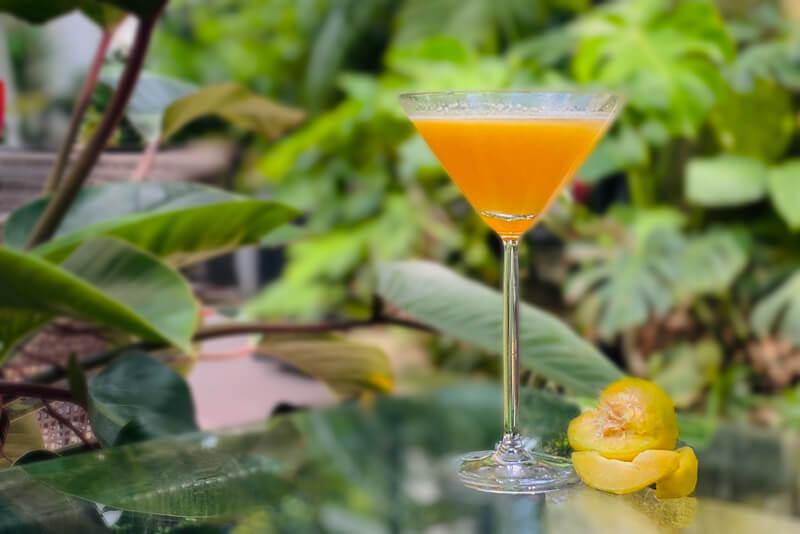 Hanoi Cocktail - Ly Quoc Su
